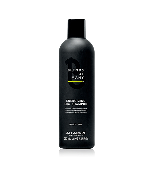 Alfaparf Blends Of Many Energizing Low Shampoo 250ml