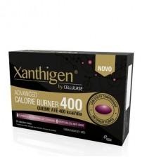 Cellulase Xanthigen 90 Cápsulas